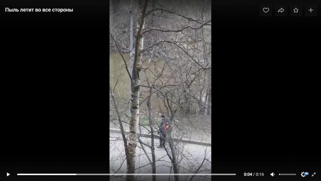 Летит в окна: жителей Невского района возмутила «пыльная» уборка листьев
