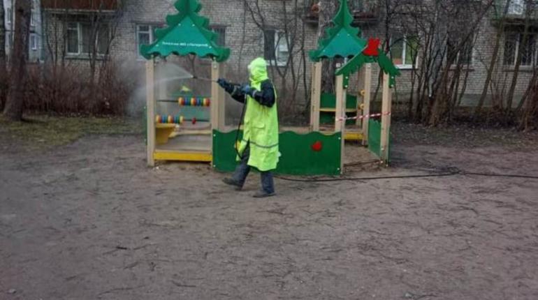 Итоги недели в Петербурге: первые штрафы, ядовитые маски и ультиматум ресторатора