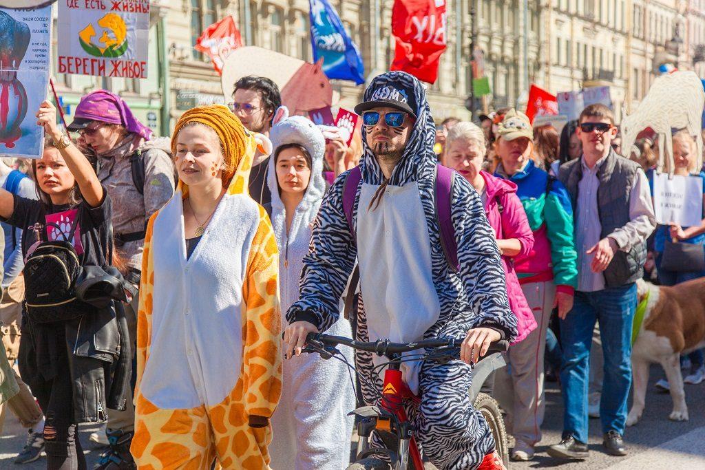 Зоозащитники вдохновились онлайн-митингом и тоже решили «выйти» на марш