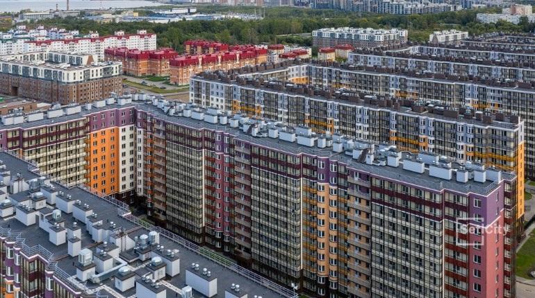 Петербургские новостройки за 2,5 года подорожали почти на 30%