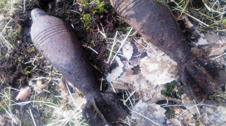 Из Приморского района вывезли боеприпасы Великой Отечественной войны