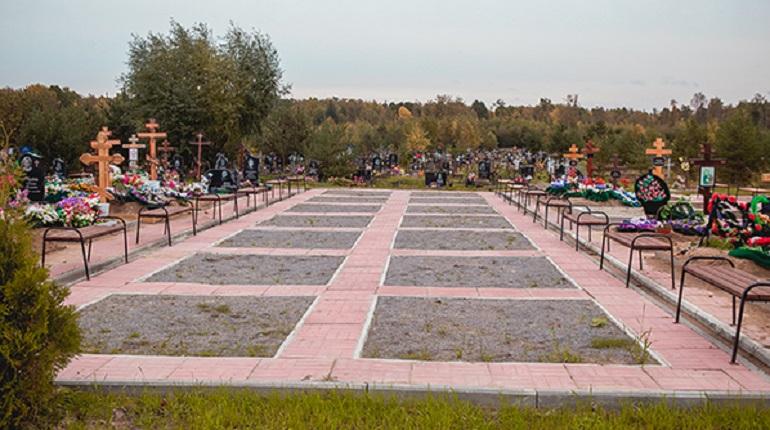 Какие кладбища Петербурга ждут бывших глав комитетов