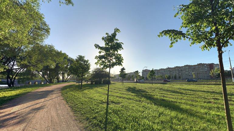 Активисты собрали подписи за отмену аренды 34 га земли в Полежаевском парке