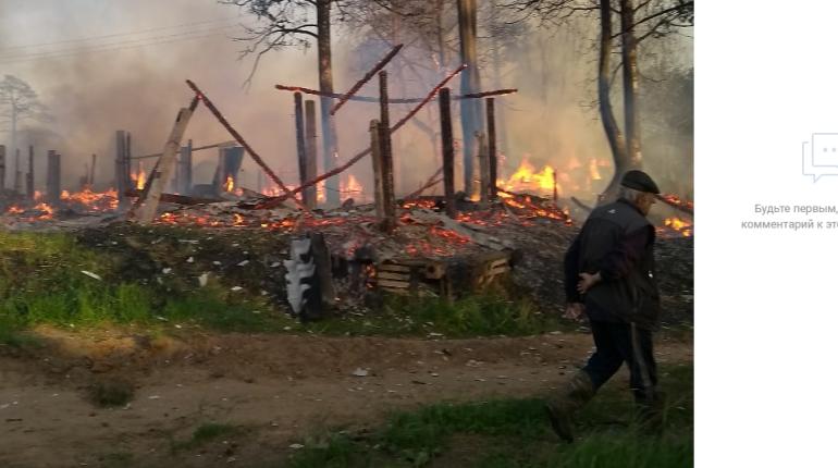 Пожар уничтожил десятки сараев в деревне под Лугой