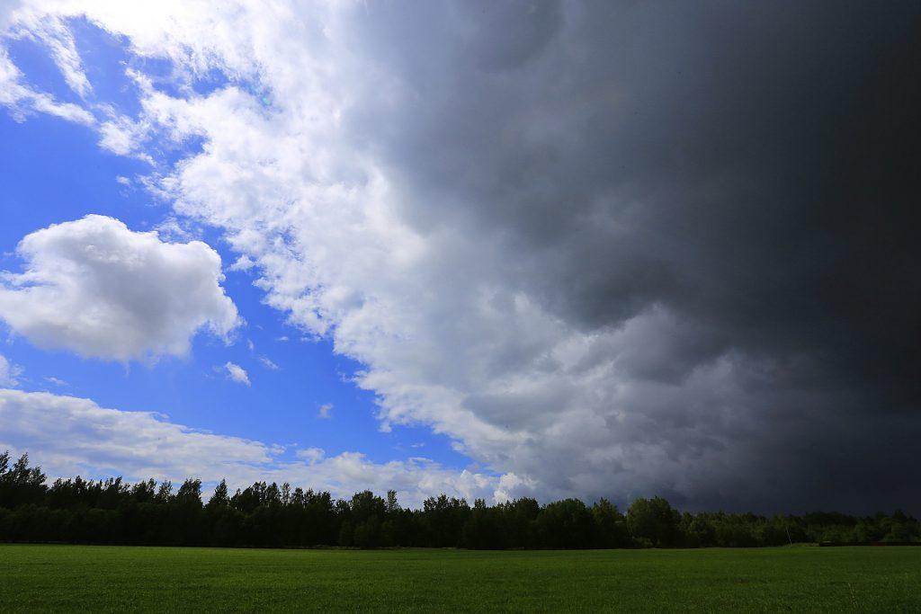 В Петербурге снова пройдут дожди с грозами
