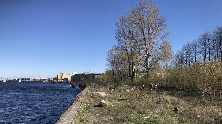 Жители Васьки хотят сквер, власти – дорогу. Пока есть только мусор