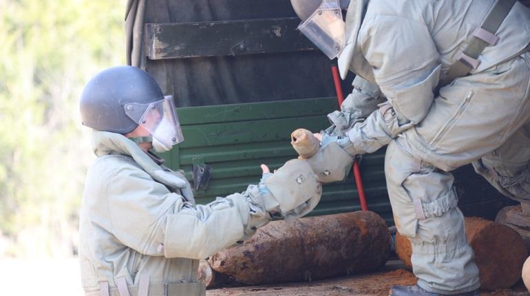Военные ЗВО эвакуировали 27 мин времен войны из села в Ленобласти