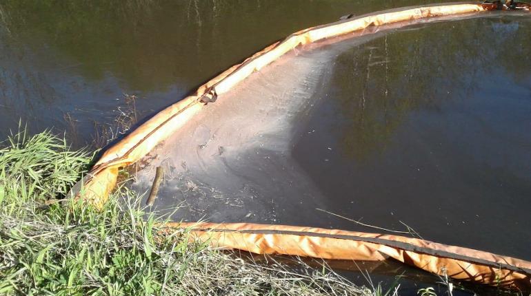 В петербургские водоемы «слили» 1,5 млрд рублей, но купаться все равно нельзя