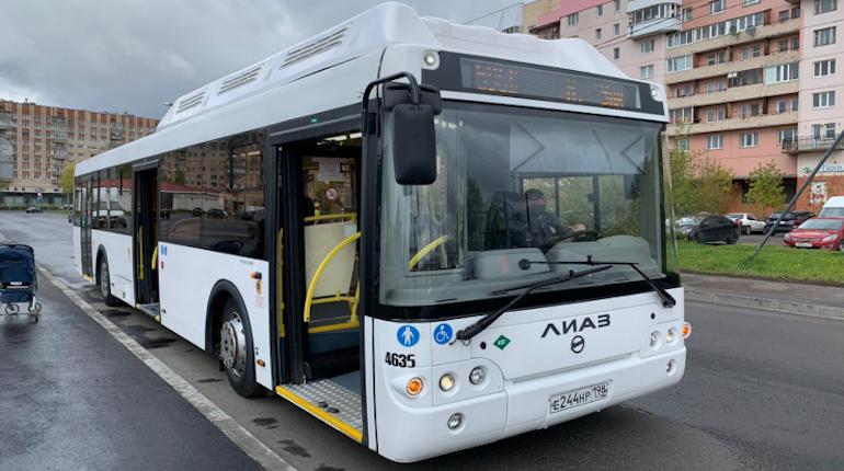 В Петербурге пойдёт «прямая линия» по вопросам работы общественного транспорта