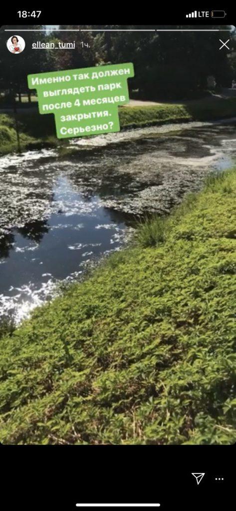 Петербуржцы жалуются на грязь в прудах Таврического сада