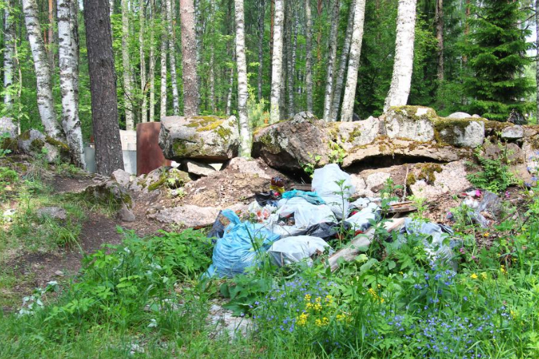 В Ленобласти избавились от 64 нелегальных свалок