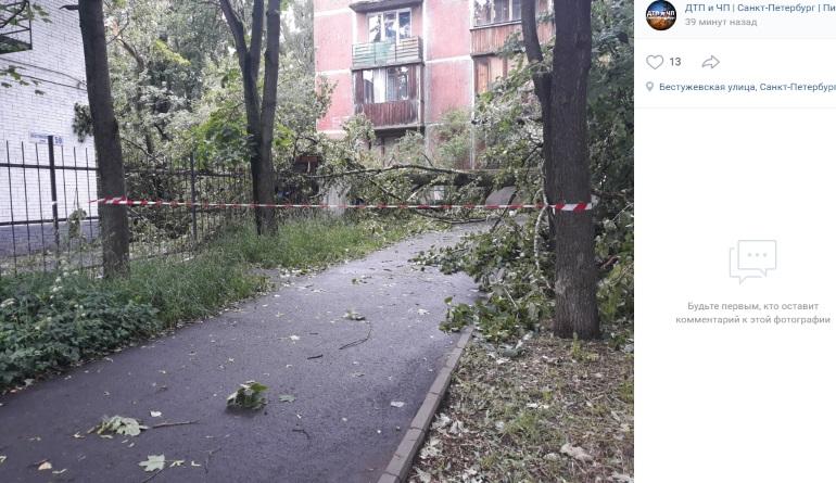 Ураган разбросал по Петербургу деревья и затопил улицы. Синоптики обещают завтра еще