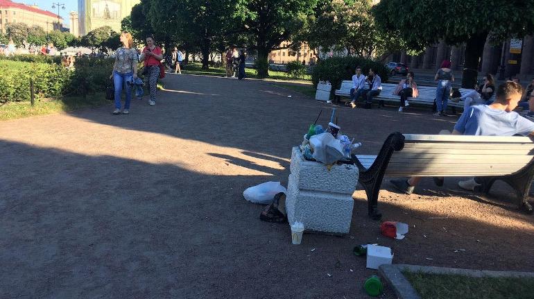 Комитет по благоустройству утвердил мусорную схему: без свалок в Петергофе и областных лесничествах