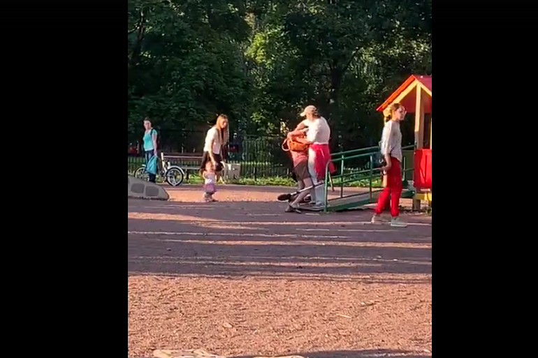 Петербурженка устроила бойню с чужим ребенком на детской площадке в Невском районе