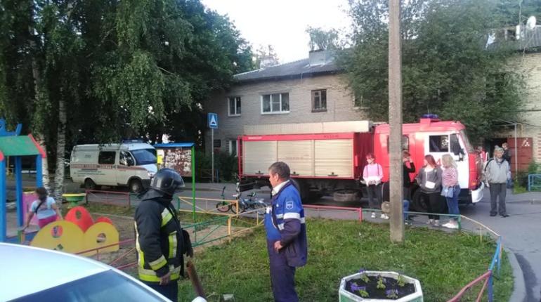 В деревне под Гатчиной в доме загорелась газовая труба, жильцов эвакуировали