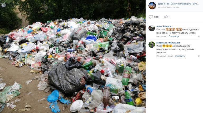 У Большого Кузьмоловского карьера выросли мусорные горы