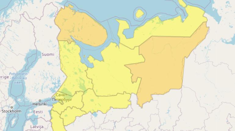 Гроза объявила «желтый» уровень погодной опасности в Петербурге, город ждут потопы