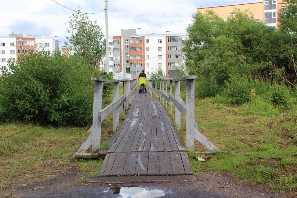 Пешеходная дорожка в Петергофе вместо ветхих мостков может появиться уже осенью