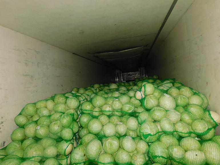 Россельхознадзор проконтролировал ввоз 115 тысяч тонн фруктов и овощей с начала июля