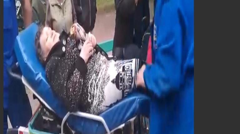 В Удельном парке на женщину упало дерево, её увезли на скорой