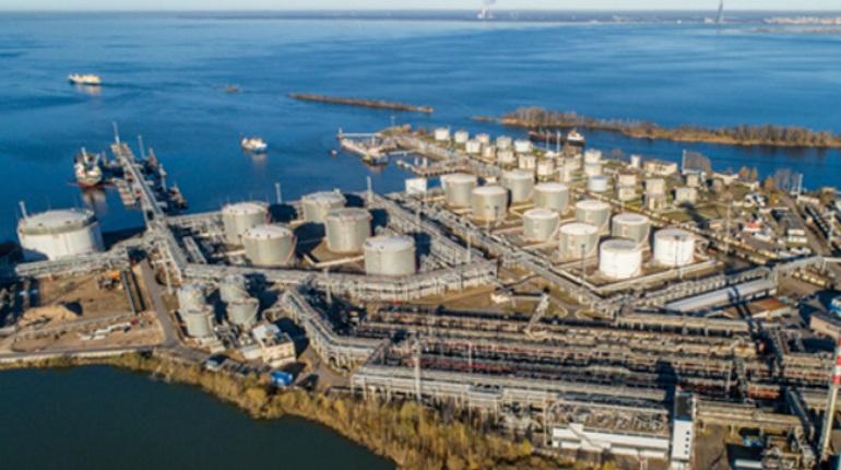 Петербургский нефтяной терминал реконструируют, несмотря на коронакризис, горожане не в восторге