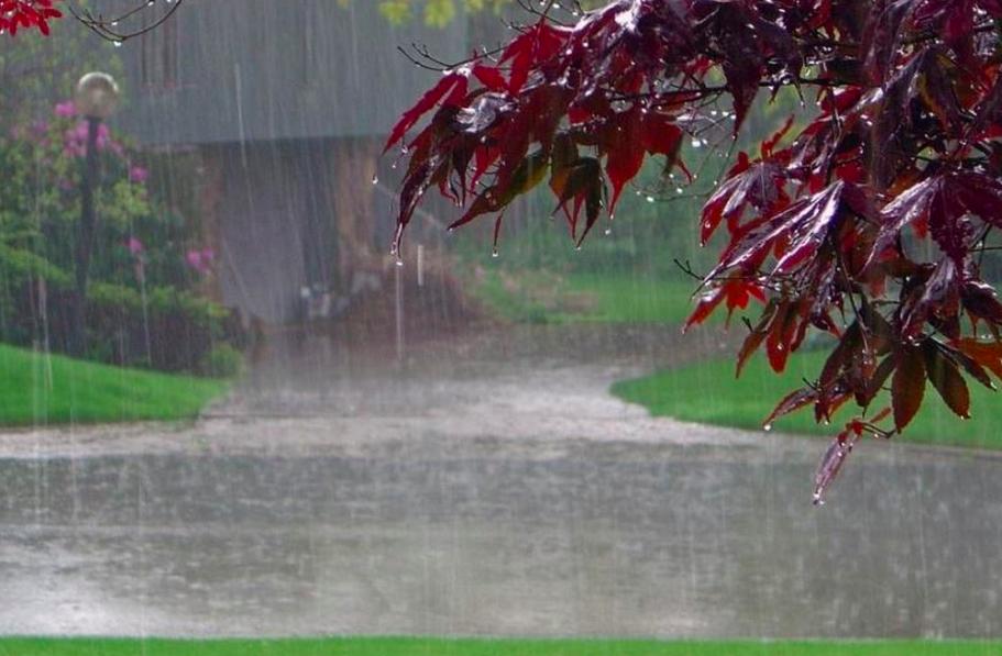 В первый день рабочей недели петербуржцев ожидают дожди
