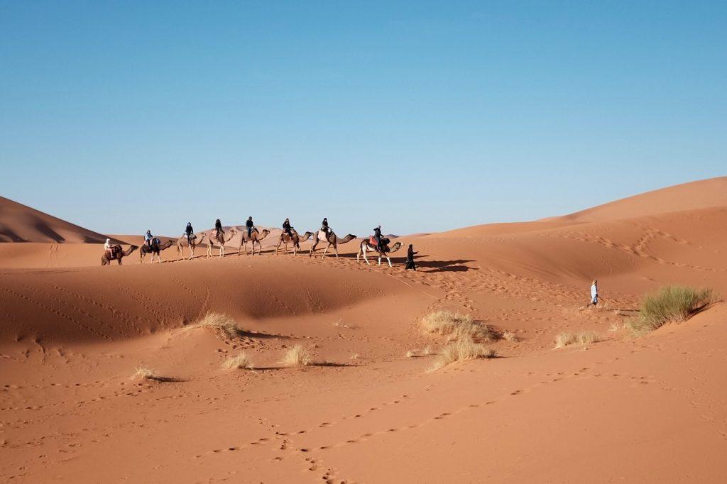 В саудовской пустыне нашли тысячелетние следы людей