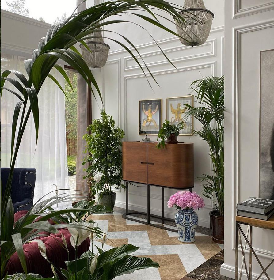 Как устроить дома джунгли — топ растений от актрисы и цветовода Варвары Щербаковой