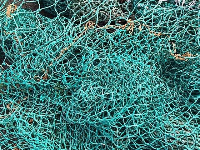 Рыбаки Ленобласти отмечают профессиональный праздник с уловом