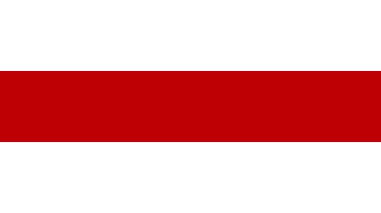 Ветераны Белоруссии против бело-красно-белого флага