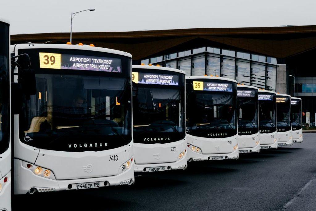 От «Московской» до «Пулково» с 7 августа начнут ездить больше автобусов