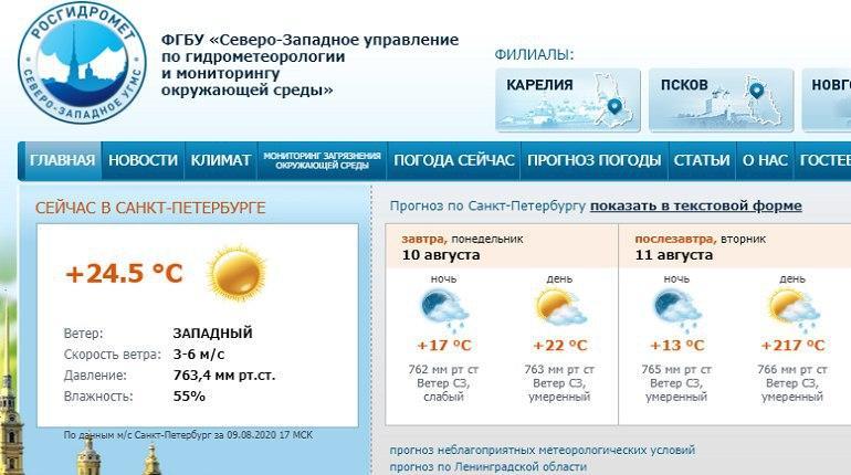 Случайное изменение климата: Петербургу обещают плюс 217 тепла