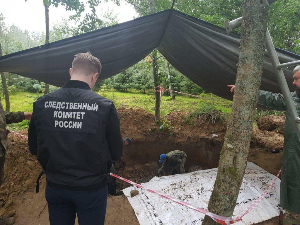 В Тосненском районе нашли скелетированные останки людей