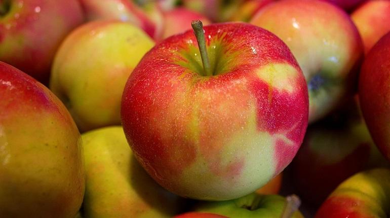 Роспотребнадзор научил россиян выбирать яблоки