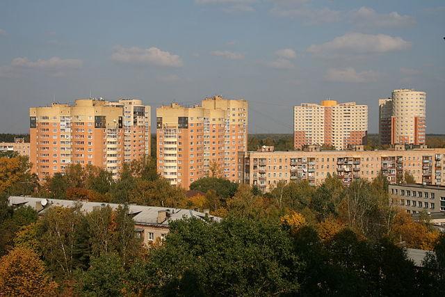 В частном доме Подмосковья из-за пожара погибли мужчина с ребенком