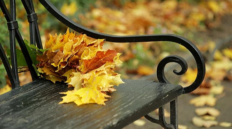 В Петербурге 17 октября ожидается хорошая погода
