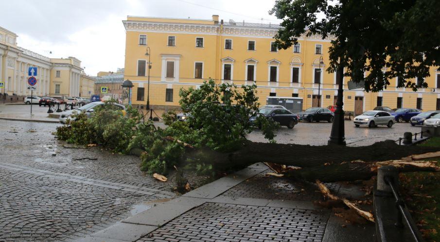 В Петербурге продолжают устранять последствия урагана