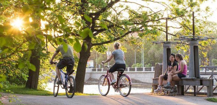 В ЦПКиО на Елагином острове запретят езду на самокате, езду на велосипеде — ограничат