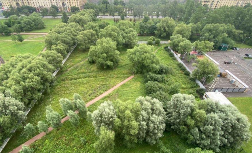 Пулковский парк. Фото: Фото: vk.com/pulkovskiypark