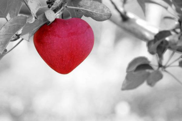Ученые выяснили, как COVID-19 влияет на сердце у детей