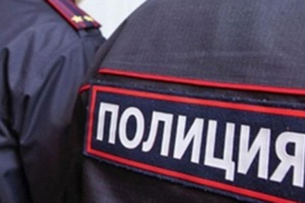 На празднование Дня сотрудника МВД власти Петербурга хотят потратить 8,5 млн рублей