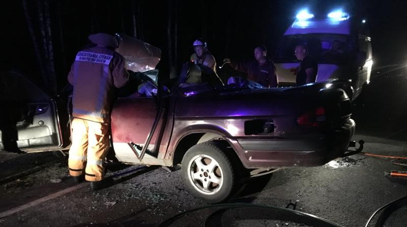 В Гатчине за полчаса потушили горящий автомобиль