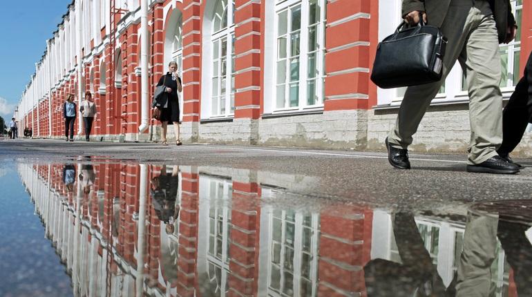 Бюст пособника нацистов Валиди демонтировали во дворе СПбГУ