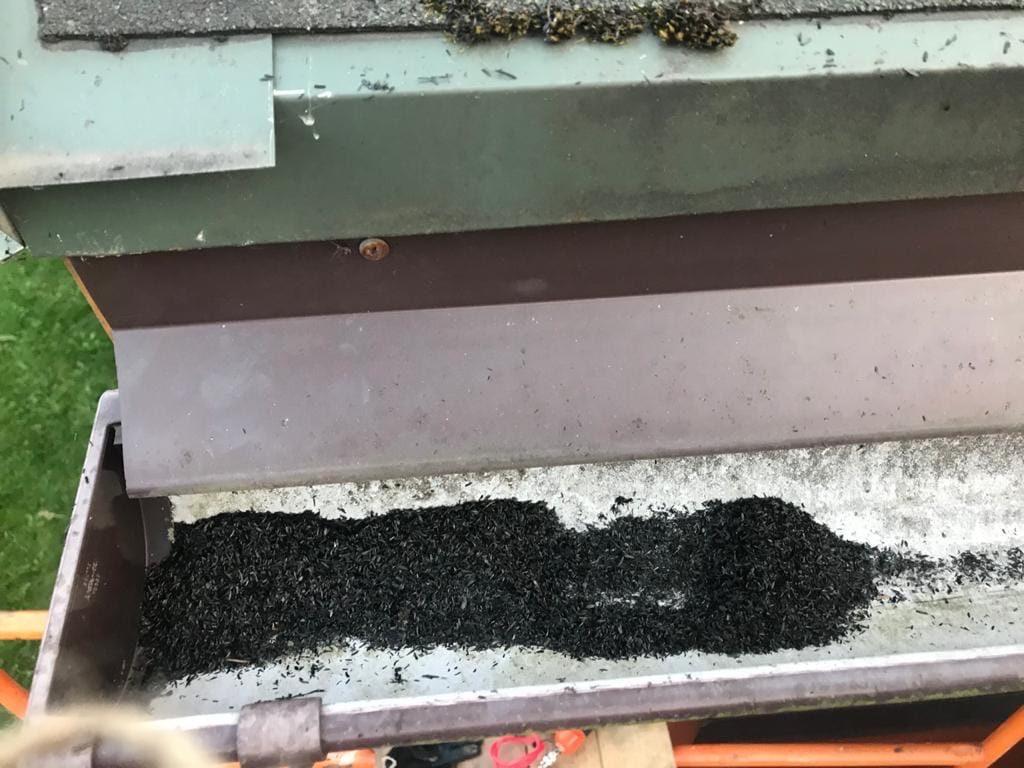 В компании «Свеза» объяснили причины выбросов черного пепла в поселке Понтонный