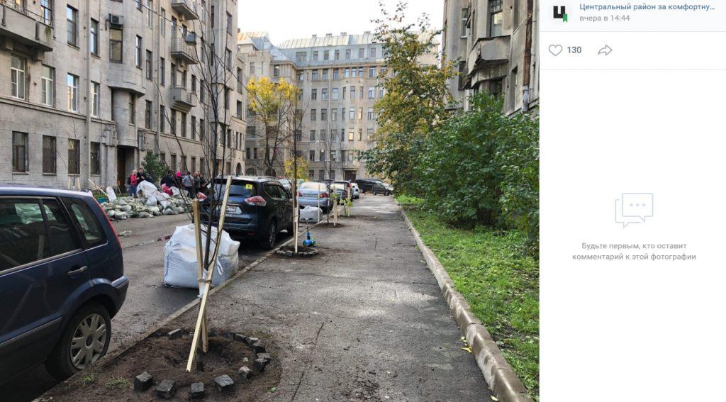 Липовая аллея за 70 тысяч появилась на улице Некрасова