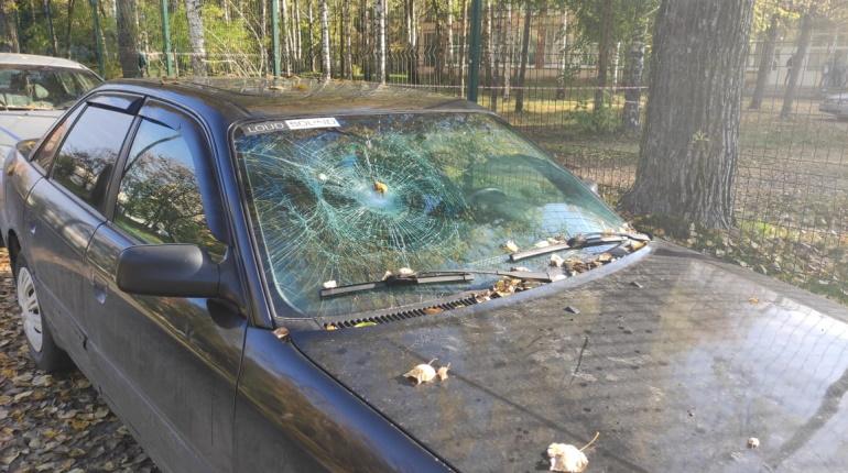 Полуголый дебошир в одних штанах избил двух подростков в Сланцах