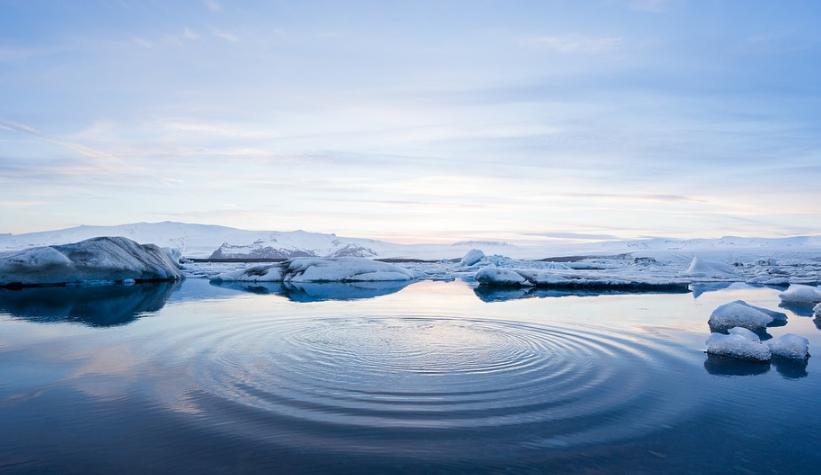 Арктический кластер Петербурга увеличивает состав участников