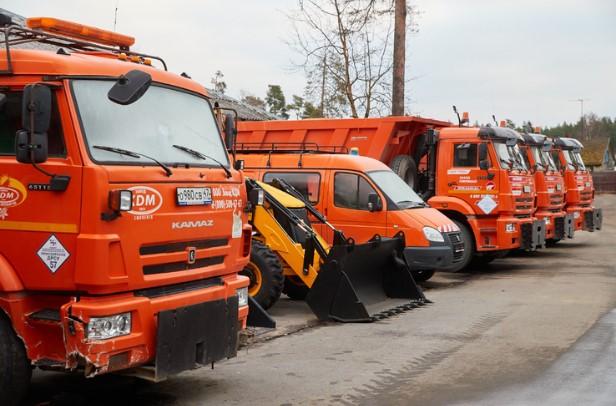 Поваленные метелью деревья в Сосновом Бору вышли убирать коммунальщики