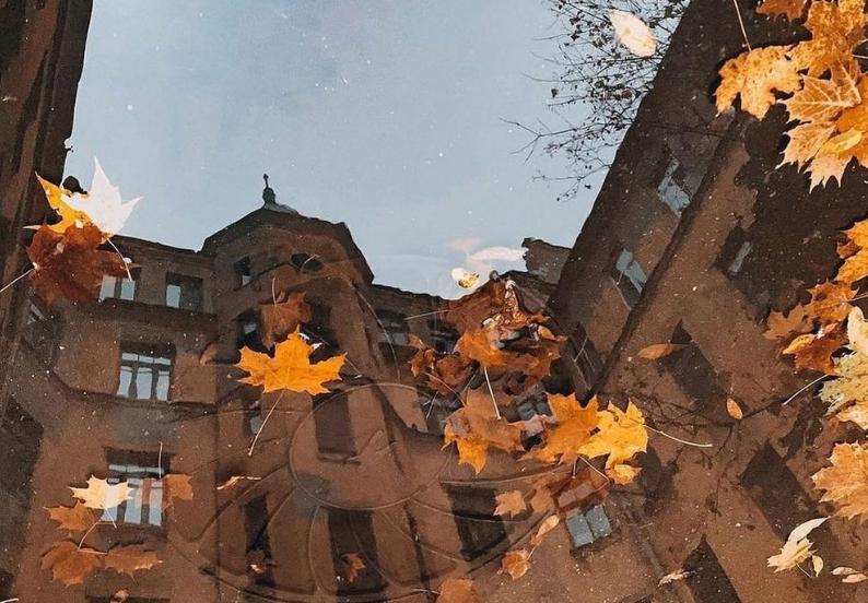 В субботу Петербург ждёт похолодание