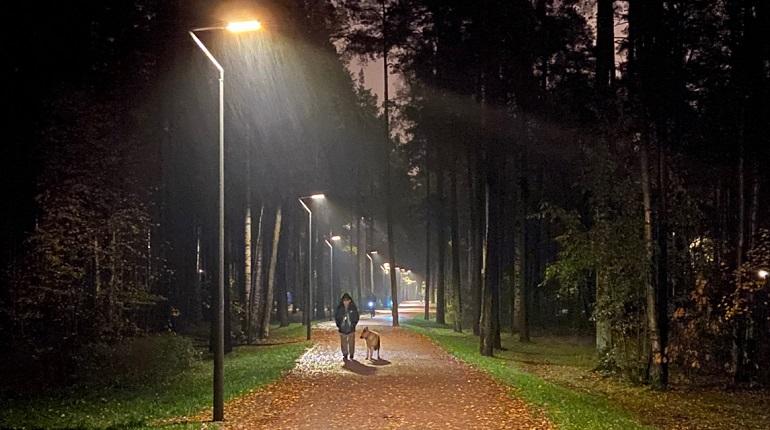 На 30 улицах и магистралях Петербурга улучшат уличное освещение
